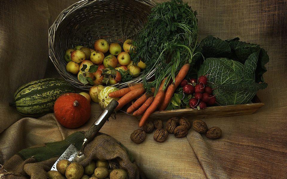 harvest-3679075_960_720